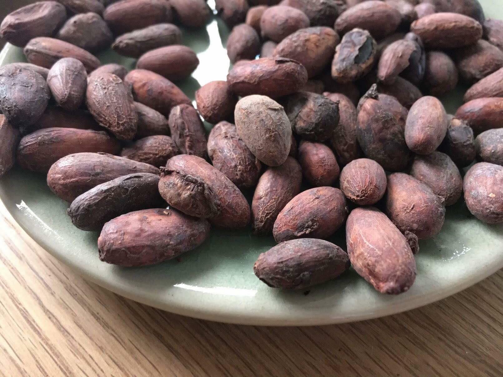 アマゾン野生種カカオ豆から作るチョコレート